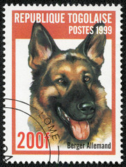 stamp printed in Togo shows a dog