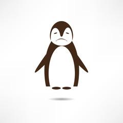 Sad penguin.