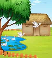Wall Murals River, lake Ducks, a house and a beautiful landscape