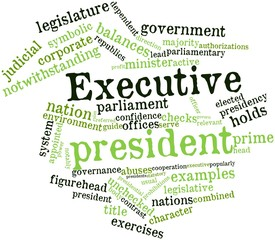 Word cloud for Executive president