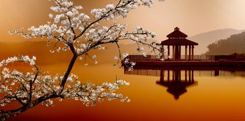Obraz SUN MOON LAKE, Taiwan, for adv or others purpose use - fototapety do salonu