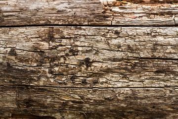 Textura de madera rustica.