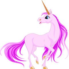 In de dag Pony unicorn
