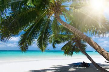 Foto op Aluminium Strand White coral beach sand and azure indian ocean.