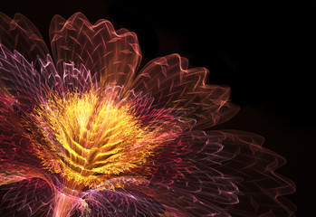 Wall Mural - abstract flower fractal blossom