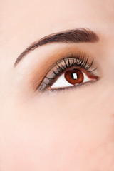 Close up beautiful woman eye with professional make up