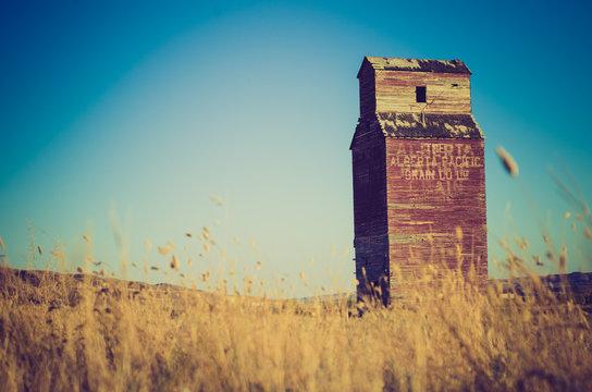 grain elevator with grass - Drumheller Alberta - LOMO