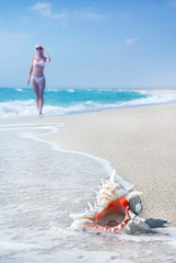 Svelte blonde girl in white bikini on the sea sandy beach with b