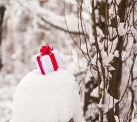 Present in snow decoration