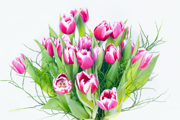 Wall Mural - Bouquet of tulips