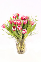 Wall Mural - Bouquet of tulips in a vase