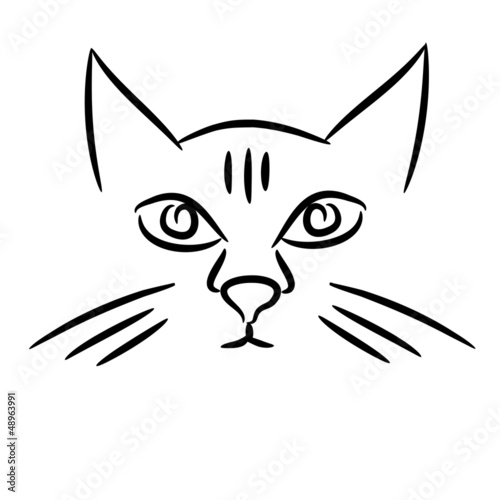 Line Drawing Cat Face : Quot cat face sketch stock image and royalty free vector
