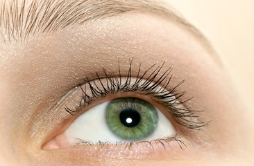 Beautiful woman green eye close-up