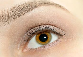 Beautiful woman eye close-up