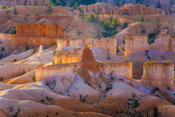 beautiful landscape in Bryce Canyon in sunrise