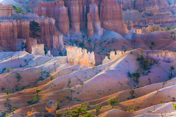 beautiful landscape in Bryce Canyon with magnificent Stone forma