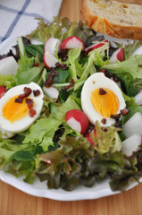 Salat mit Ei, Speck, Radieschen