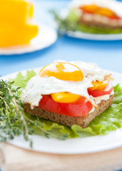 egg on vegetables and bread