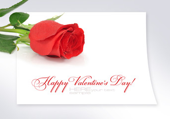 Red rose on the sheet of paper with space for text
