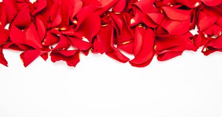 Obraz Rose petals - fototapety do salonu
