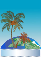 composition with palm trees and globe