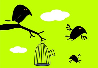 Printed roller blinds Birds in cages Funny birds and empty cage