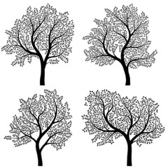 Abstract silhouettes of trees with leaves.