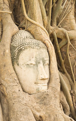 The ancient city of Ayutthaya