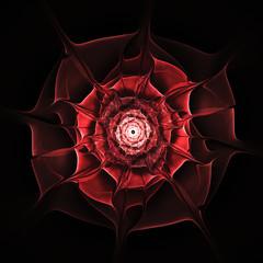 Wall Mural - Red rose fractal