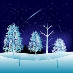 Winter in wood