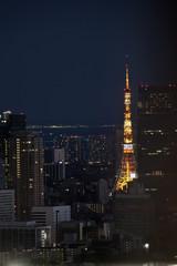 tokyo tower, lights at night