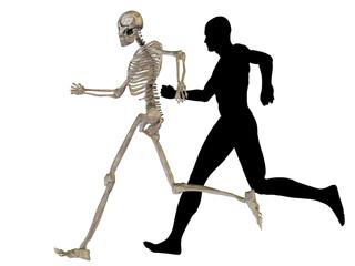 High resolution conceptual human for anatomy,medicine and health