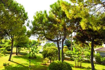 Hotel in Greece.hotel garden.greek colorful villa