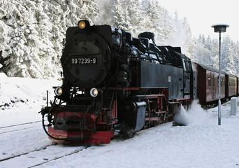 Brockenbahn Wernigerode/Schierke (Harz) 8