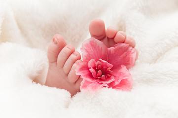 Babyfeet with pink flower