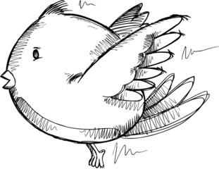 Bird Sketch Drawing Vector