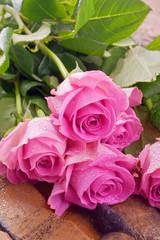 Rosa Rosen auf Holz