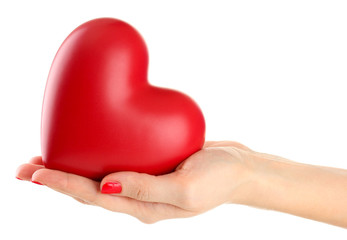 Fototapete - Red heart in woman hand, isolated on white