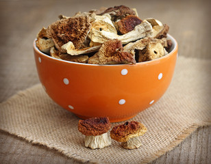 Dried mushrooms in orange bowl on wooden background