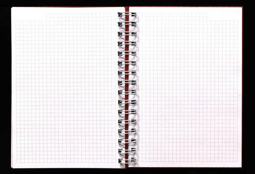 Cahier à carreaux, double page