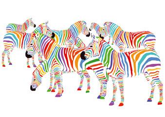 Farbenfrohe Zebras
