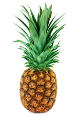 One ripe pineapple isolated on white