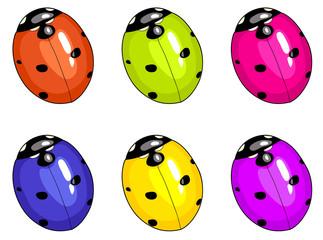 Ladybird beetle. Unreal colours