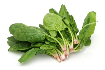 Pics For > Spinach Leaves Bunch