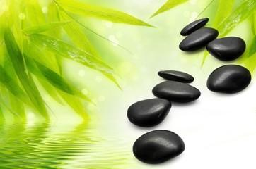 Zen Bamboo ,pebbles,sun and water.