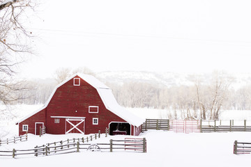 Red barn Wall mural