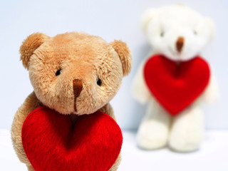 Valentine bear dolls love couple