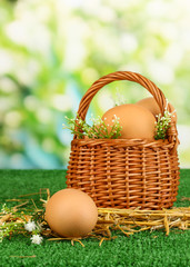 Eggs in basket on grass on natural background