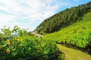 Scenic Mae Uko mountain.