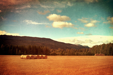 Field with hay bales vintage photo.